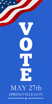 Vote Local Elections Pole Banner: 2098-1