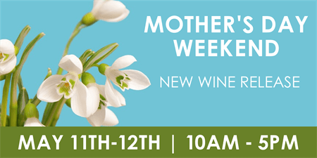 Mother's Day Weekend Banner: 3006-1