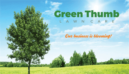 Green Lawn Care Business Card: 1621-5