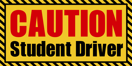 Student Driver Caution Car Magnet: 387-1
