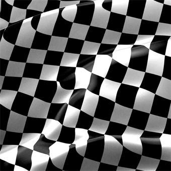 Checkered Race Flag Backdrop: 492-2