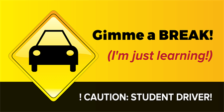 Caution Student Driver Car Magnet: 481-1