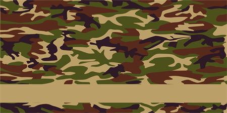 Military Camouflage Banner: 496-1