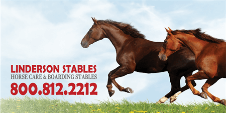 Horse Boarding And Care Mesh Banner: 517-1