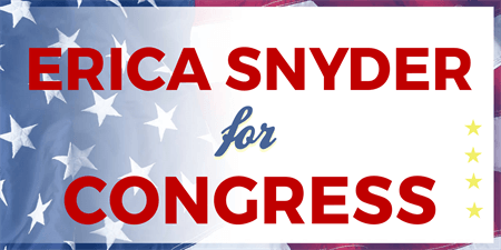 Congressional Election Banner: 537-1