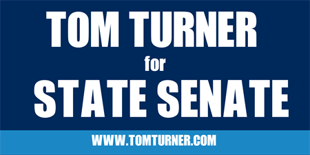 State Senate Election Banner: 541-1